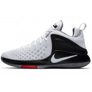Nike LeBron Zoom Witness
