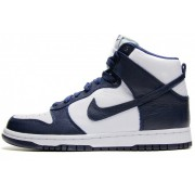 Nike Dunk Retro Villanova
